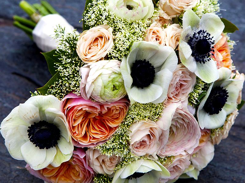 Tiger Lily Florals